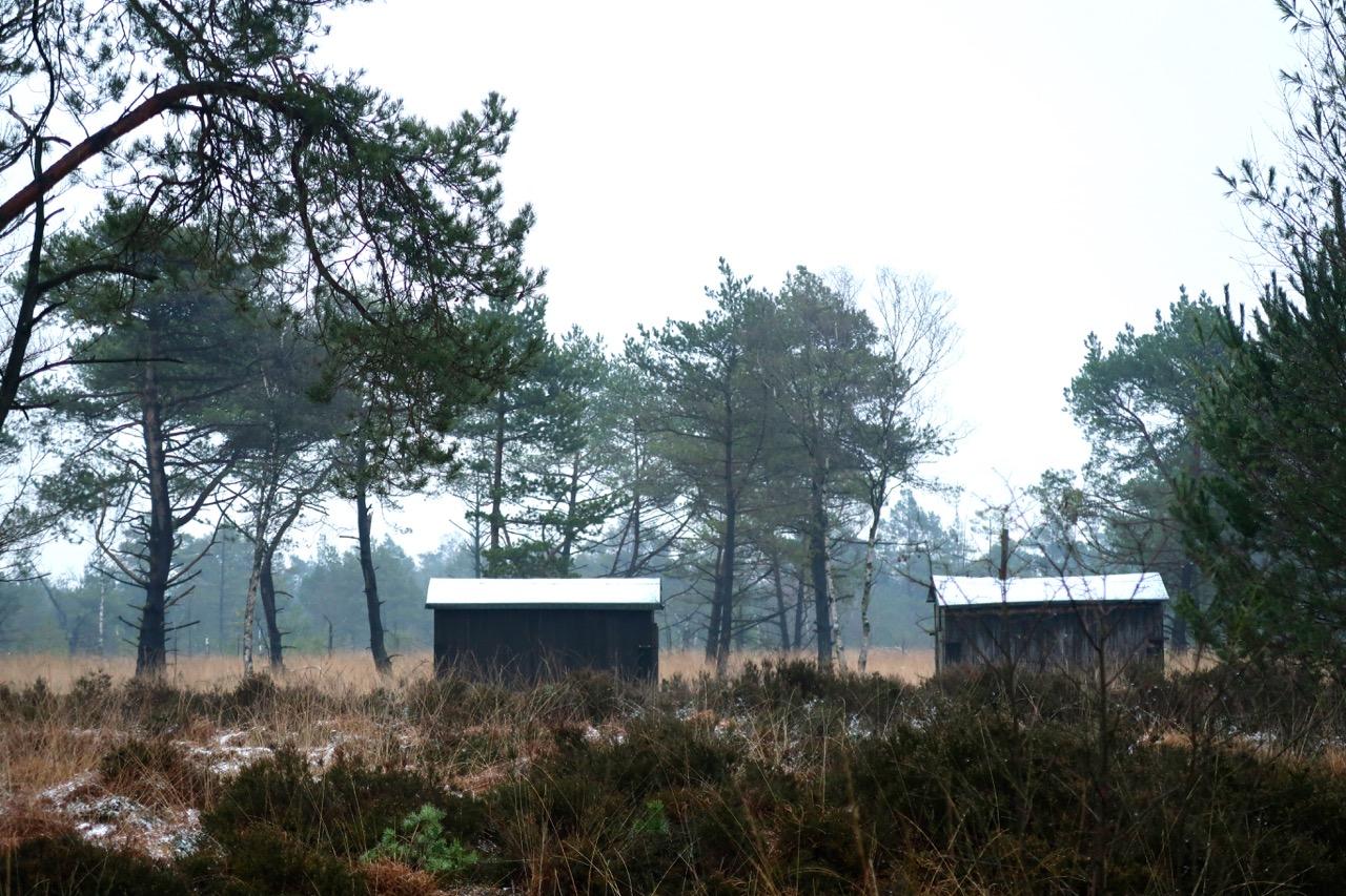Nabu Tister Bauernmoor