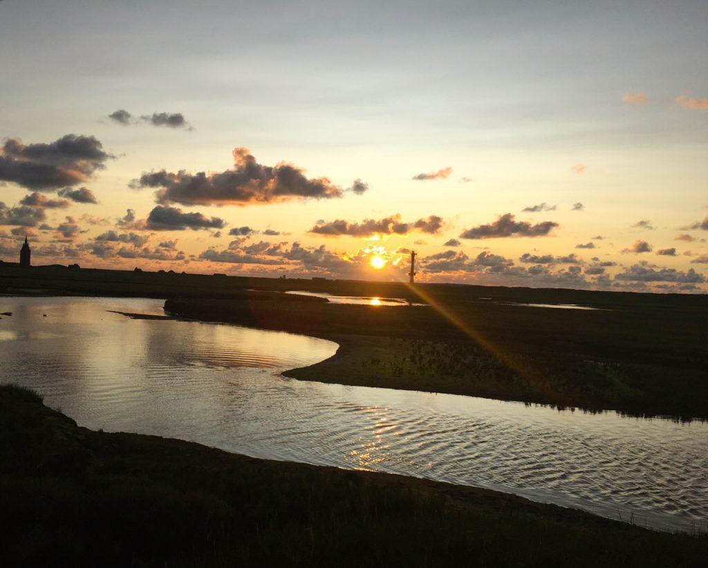 Wangerooge Sonnenuntergang in den Salzwiesen