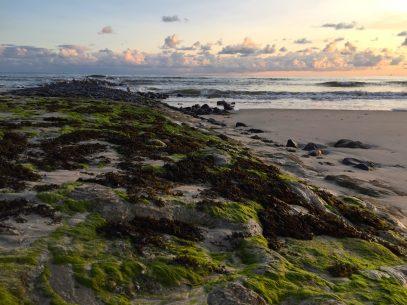Wangerooge Urlaub - Natur, Wellness, Aktiv