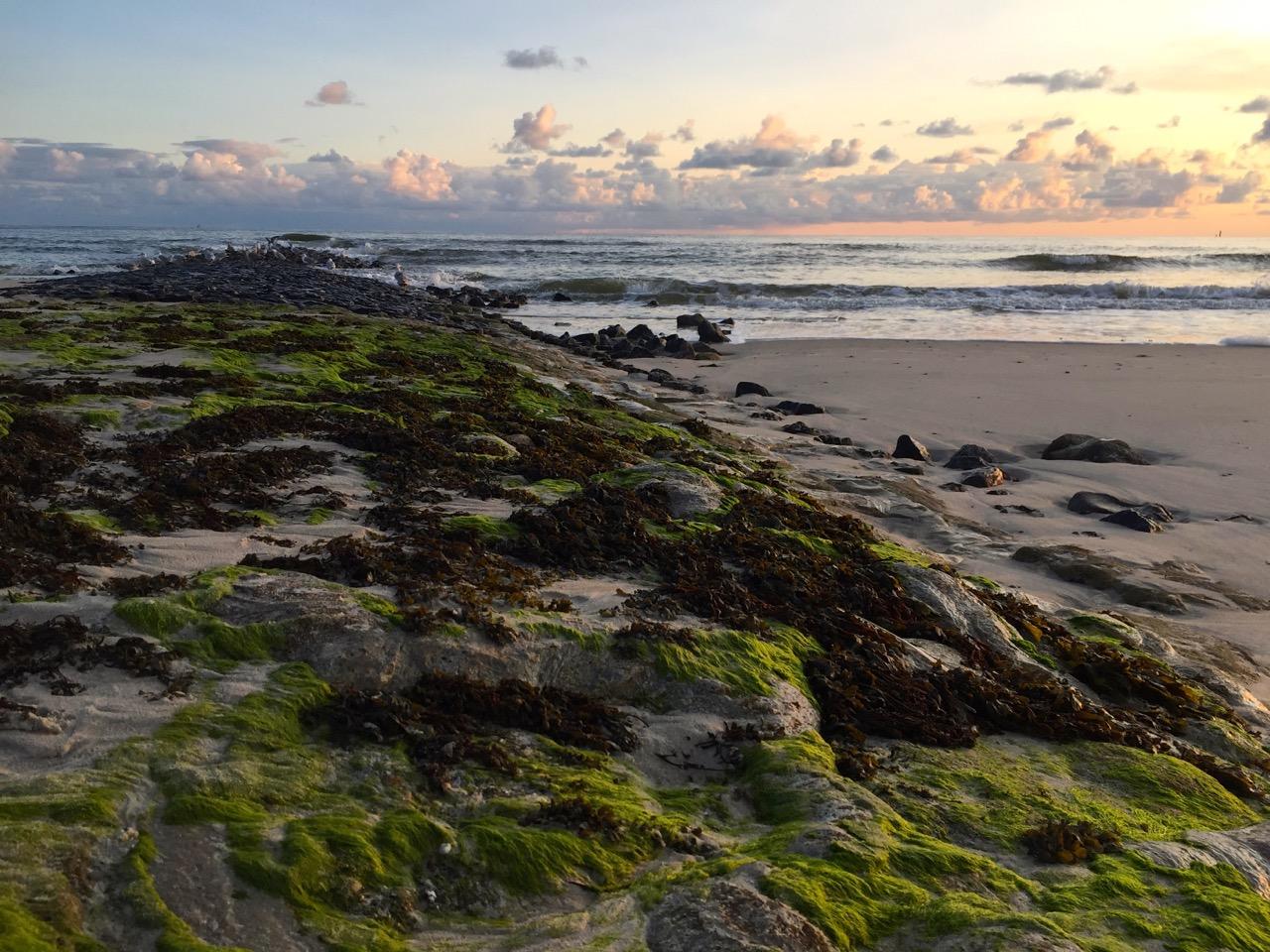 Wangerooge Urlaub – Natur, Wellness, Aktiv