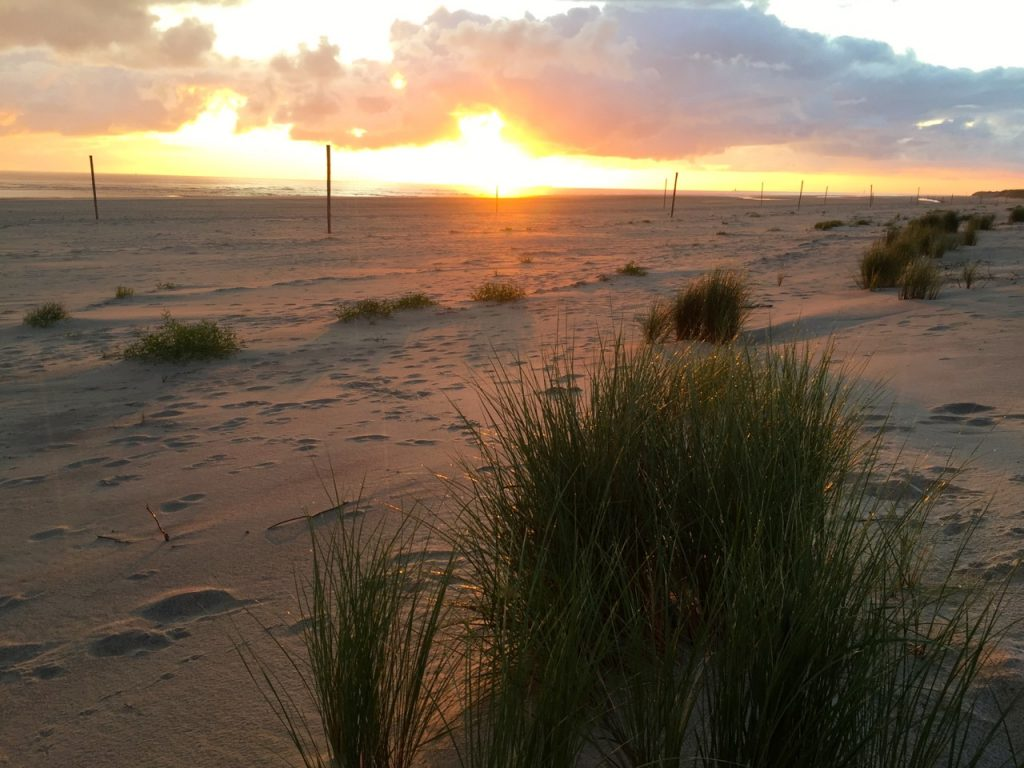 Wangerooge Bilder - Sonnenaufgang am Ostende