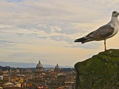Blick von der Engelsburg auf Rom