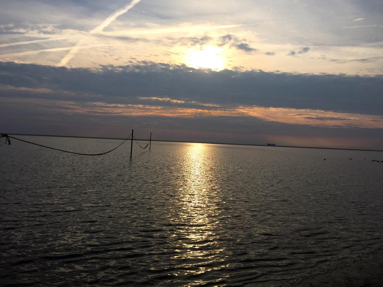 Borkum Reise-Moment Sonnenuntergang mit Seehund