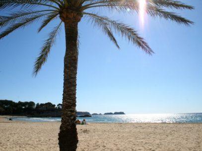 Mallorca als Reiseziel