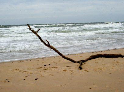 Entspannung & Entschleunigung - der Wunsch danach wächst