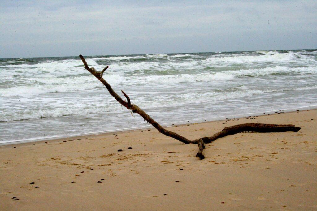 Strand Daenemark