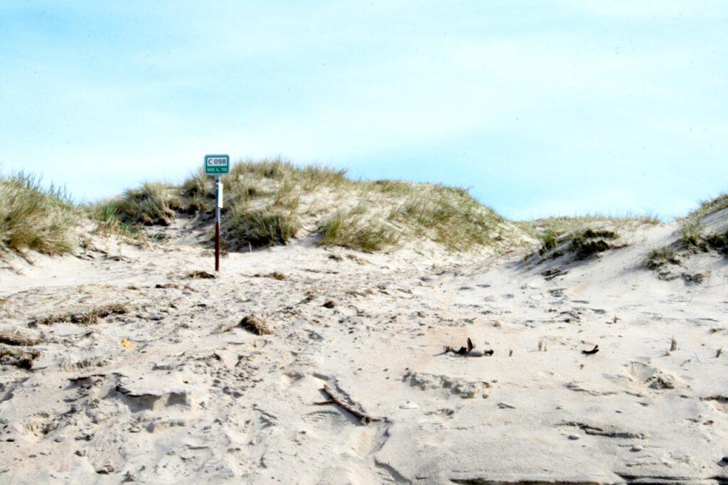 Strand und Duenen
