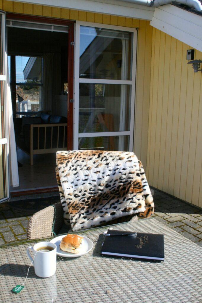 Ferienhaus Ringkobing Fjord