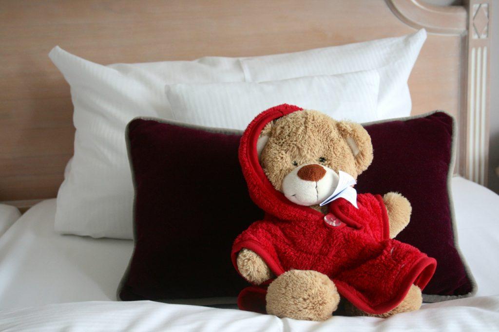Teddy aus dem Romantischen Winkel - Spa & Wellness Resort