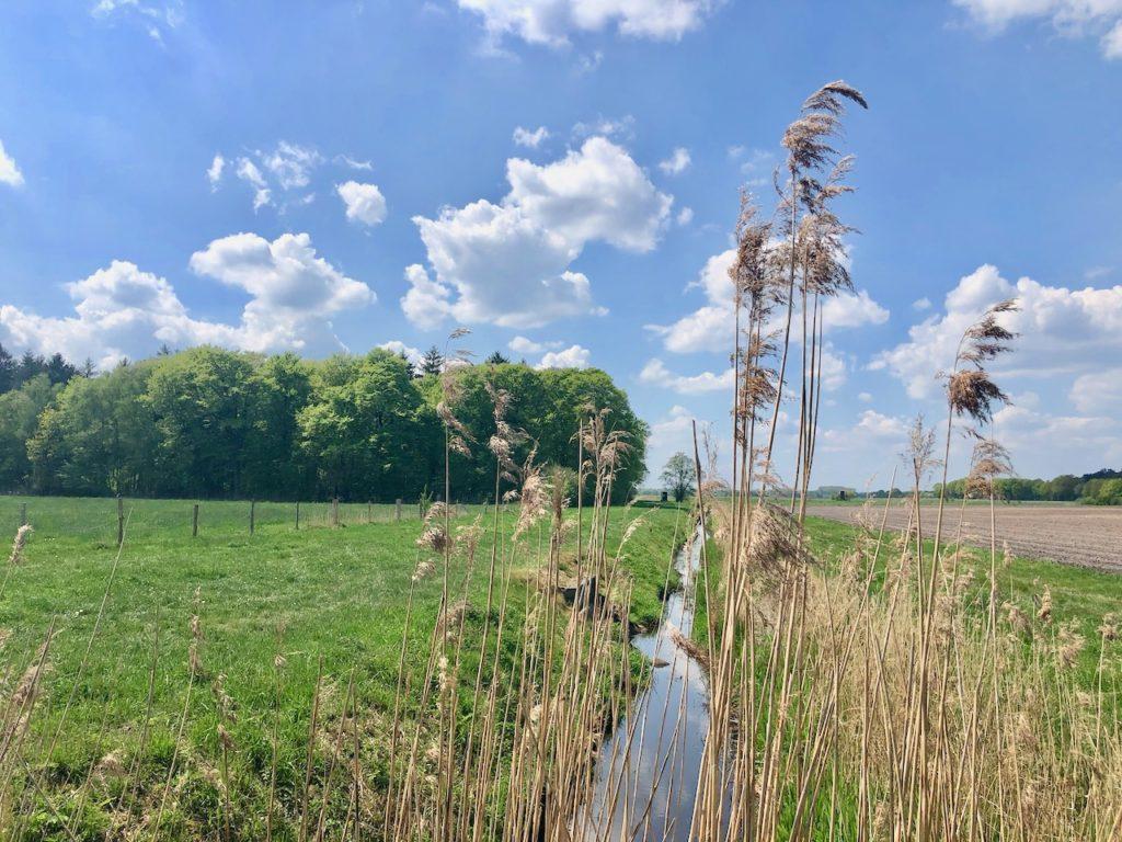 Oste-Schwinge-Kanal