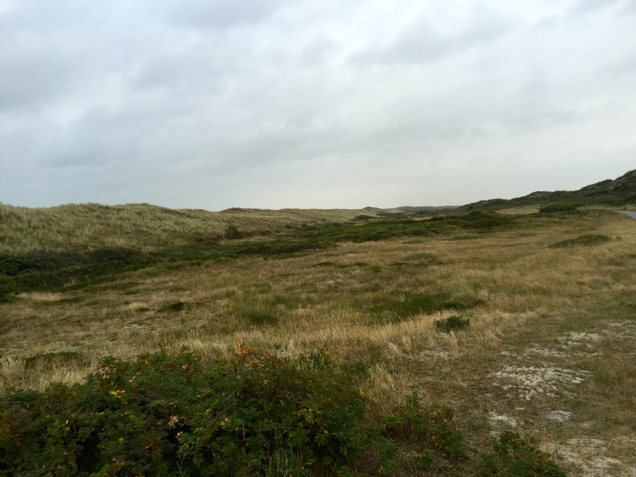 Aussichtspunkte und idyllische Rastplätze in den Dünen auf Langeoog