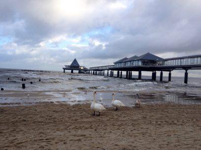 Früh am Morgen am Strand von Usedom