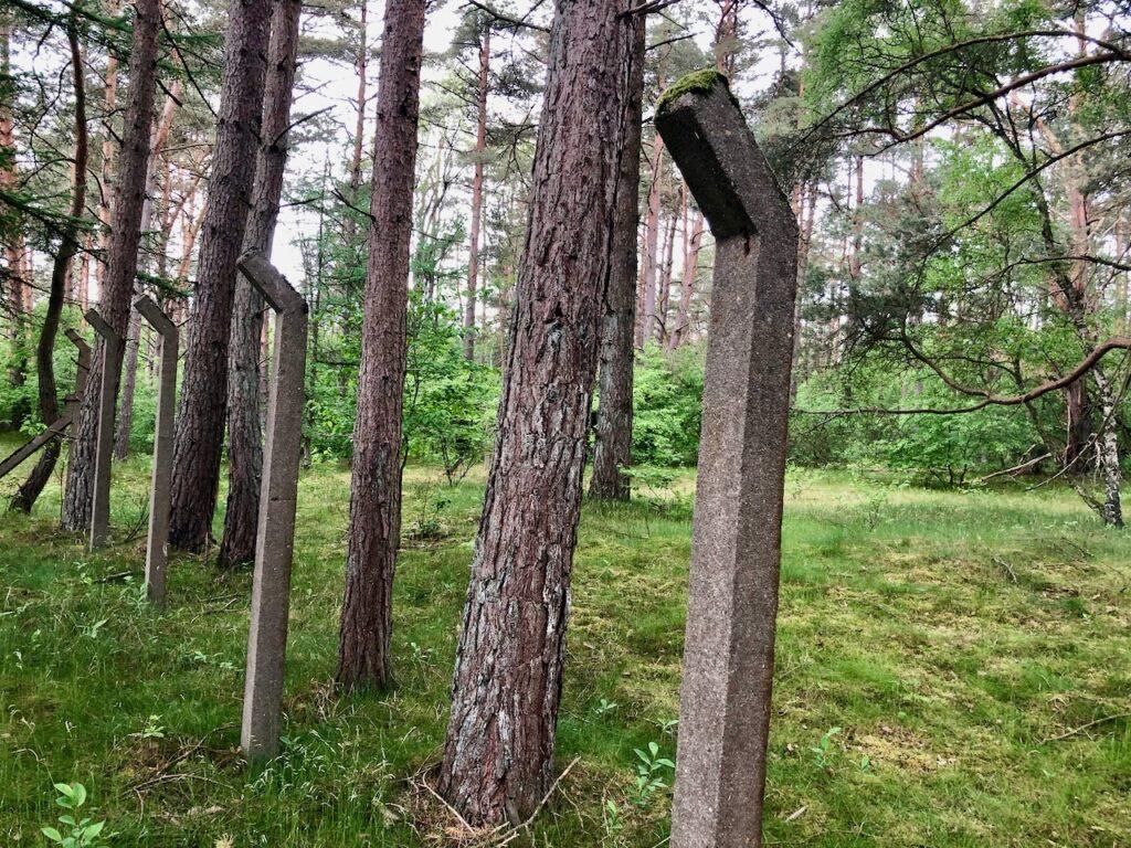 Lost Places Schleswig Holstein Ruinenwald