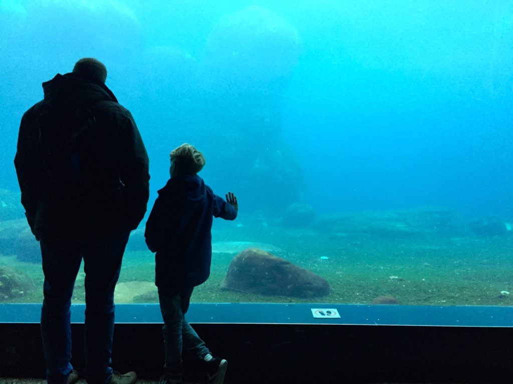 Aquarium Hamburg bei Hagenbeck