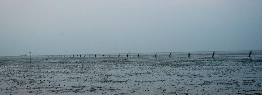 Blick auf das Watt der Nordsee