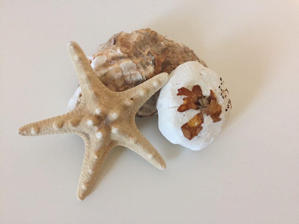 DIY Home Spa Produkte - Badekugeln selber machen