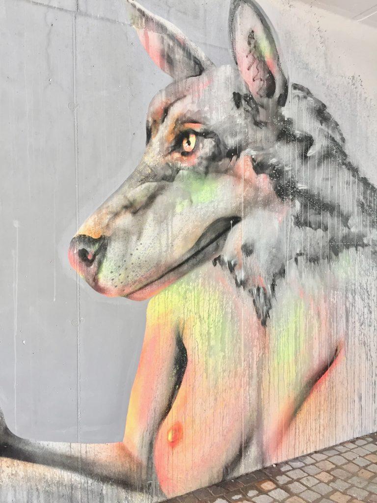 Streetart gibt es auch in Trient