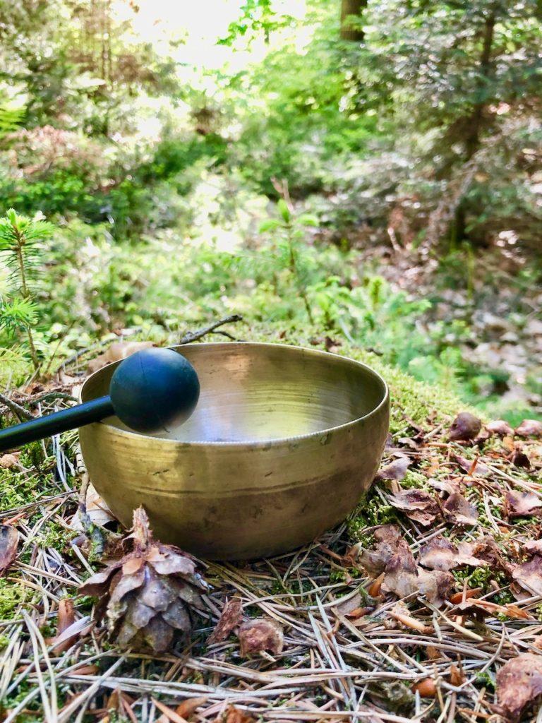 Shinrin Yoku - Waldbaden Hahnheide