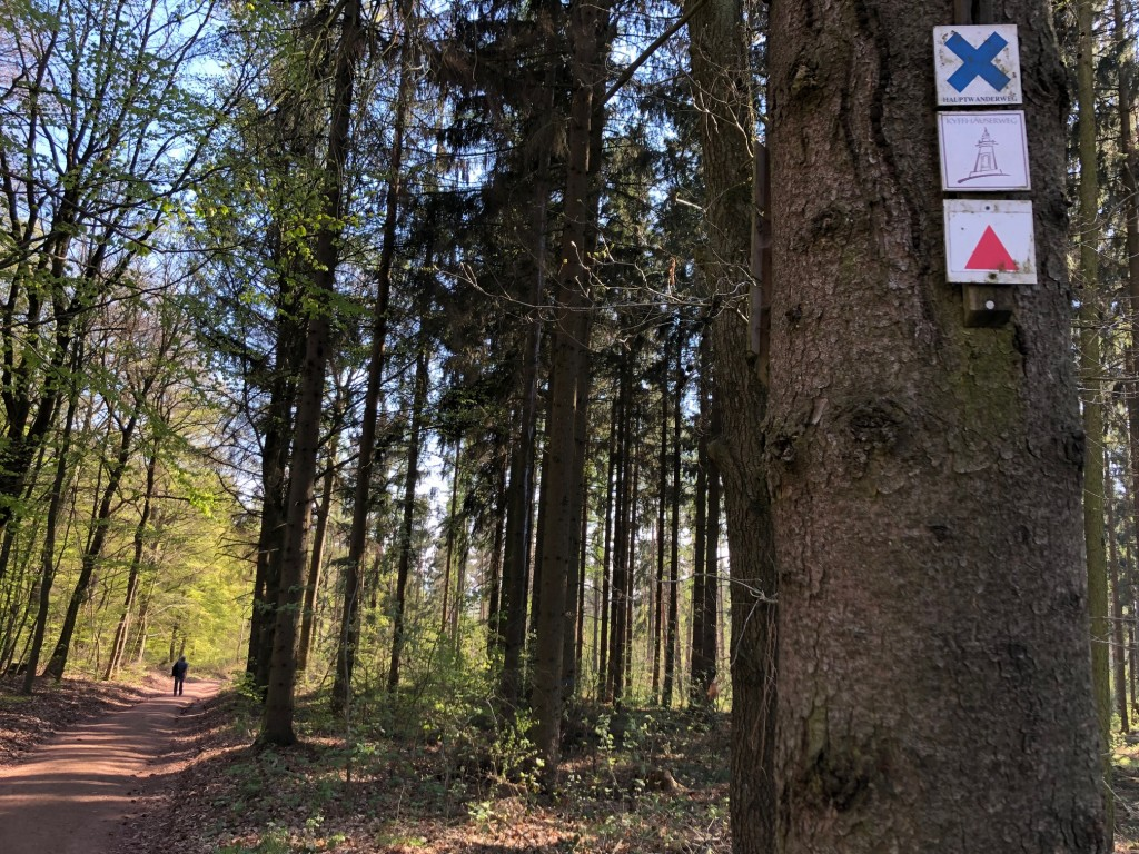 Kyffhäuserwald-Wandern-Janett-Schindler