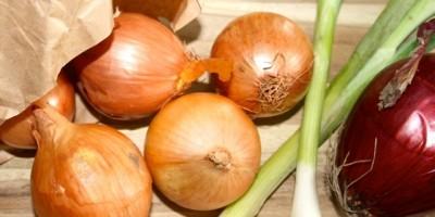 Gemüse darf bei einer ausgewogenen, gesunden Ernährung nicht fehlen - oder?!