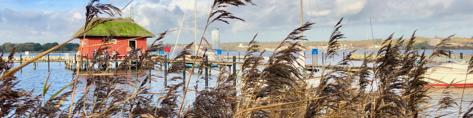 Binnenland Schleswig-Holstein: Mittendrin im entspannten Familien-Abenteuer