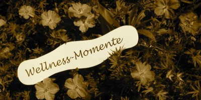 WellnessMomente_1211