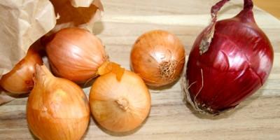 Zwiebel - lecker & gesund