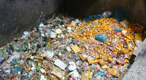 Viele unserer Lebensmittel landen einfach auf dem Müll (Quelle: www.taste-the-waste.de)