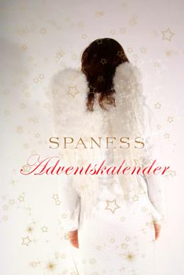 SPANESS Adventskalender