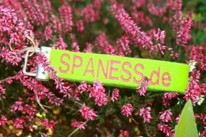 Bericht Nr. 400 im bunten SPANESS-Wellness-Blog