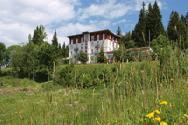 Erholung und Natur im Waldhotel am Notschreipass