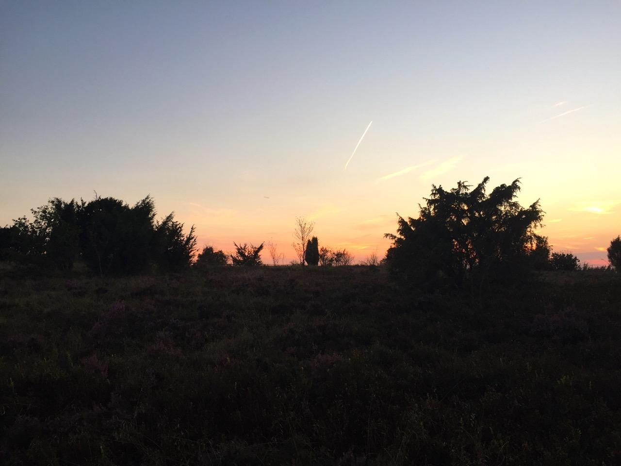 Lüneburger Heide: Wandern auf dem E1